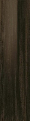 Плитка Aston Wood Dark Oak Lap 22х88