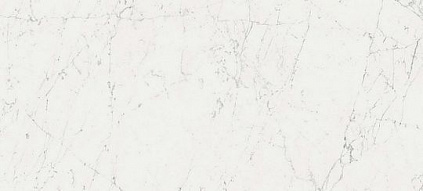 Плитка Marvel Stone Carrara Pure 110 50х110
